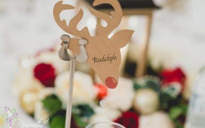Protected: Christmas Wedding Rowton Hall