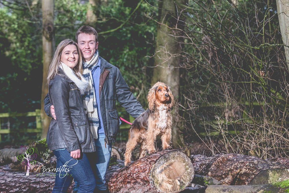 Wirral Country Park Engagement Shoot : Royden Park